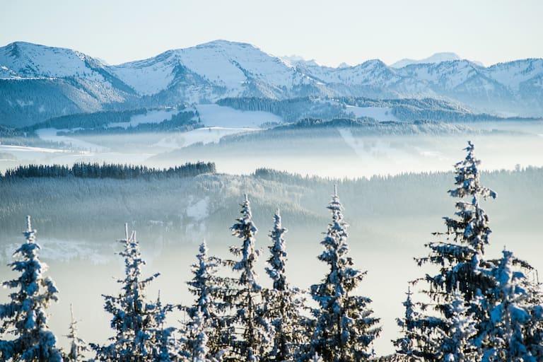Nagelfluhkette in den Allgäuer Alpen