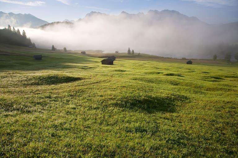 Morgentau bei Mittenwald