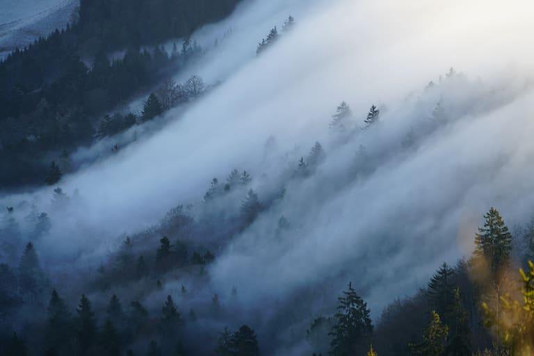 Nebelwolken schieben sich den Berg hinauf