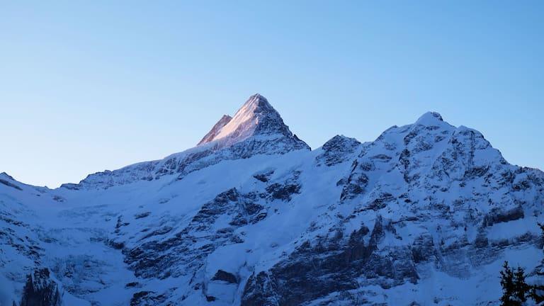 Grindelwald: Blick aufs Schreckhorn in den Berner Alpen