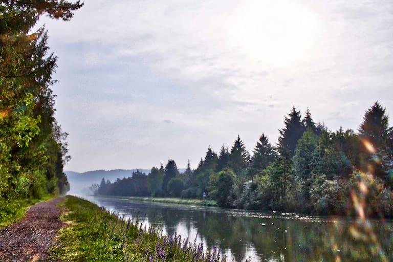 Naturschutzgebiet Pupplinger Au bei München