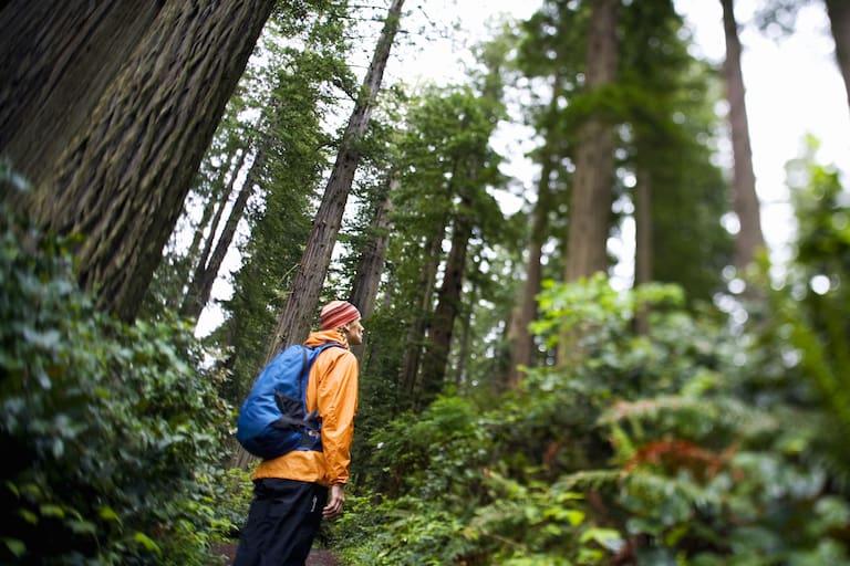 Wanderer bei Regen im Wald
