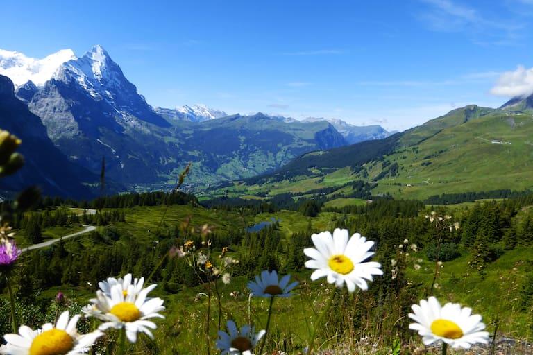 Rundwanderung in der Jungfrau-Region: Durchs Reichenbachtal im Berner Oberland