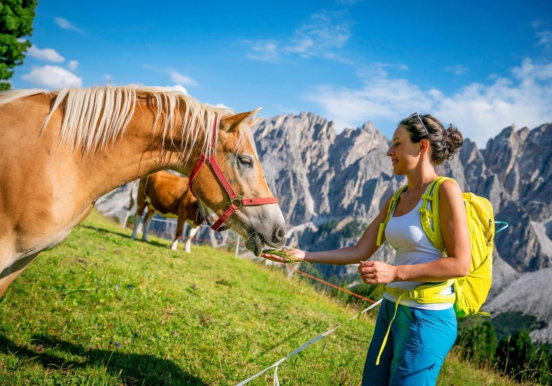 Eine Frau füttert ein Pferd auf der Alm