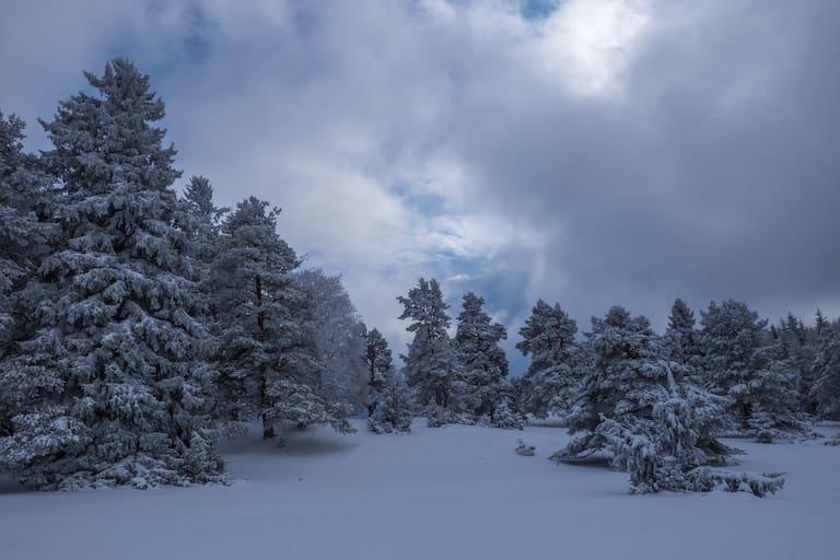 Winterwandern auf der Schwäbischen Alb