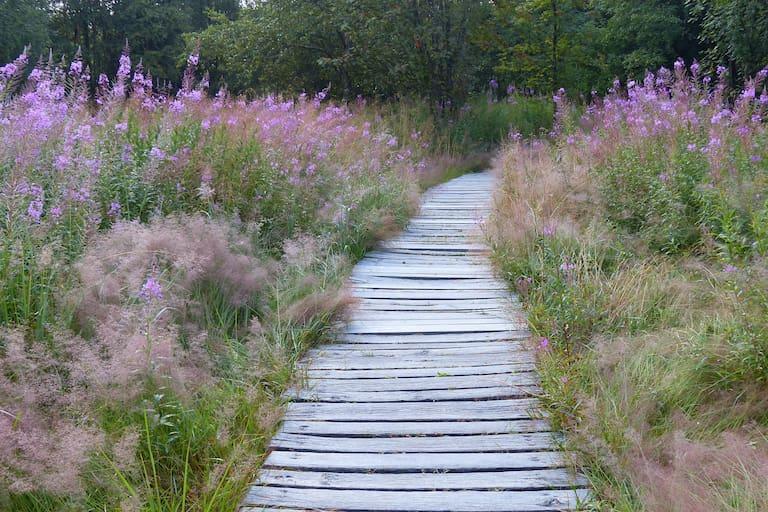 Wandern im Naturpark Bayerische Rhön