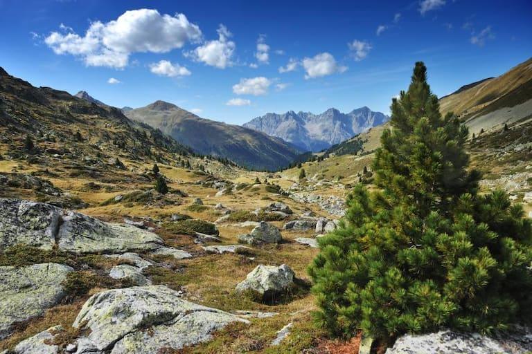 Wunderschöne Landschaft im Schweizer Nationalpark