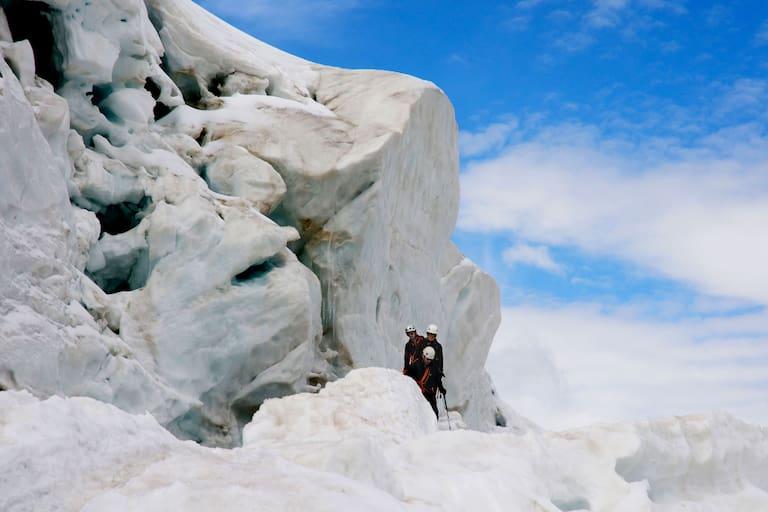 Weissmies in den Walliser Alpen: Weißes Moos
