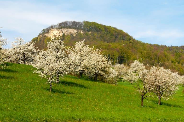 Wandern im Baselland: Sissacherflue