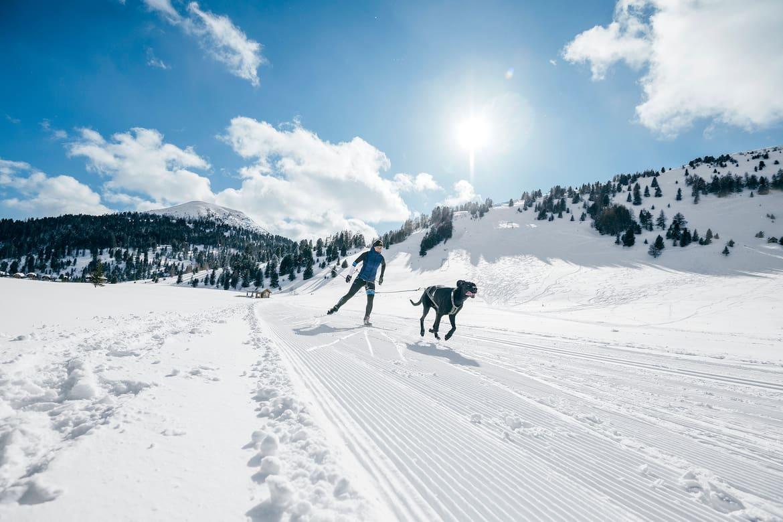 Anna Milazzi Skijöring