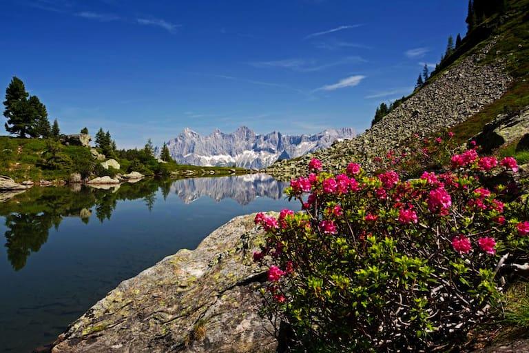 Der Mittersee (Spiegelsee) im oberen Ennstal an der Grenze der Steiermark zu Salzburg