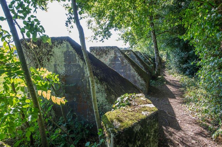"Die Toblerone-Linie: ""Sentier des Tobelrones"" nahe Nyon am Genfersee"