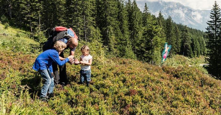 Familie auf Weide vor Wald