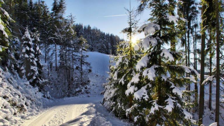 Winterwanderweg Vierawasch: Wandern bei Mühlbach am Hochkönig in Salzburg