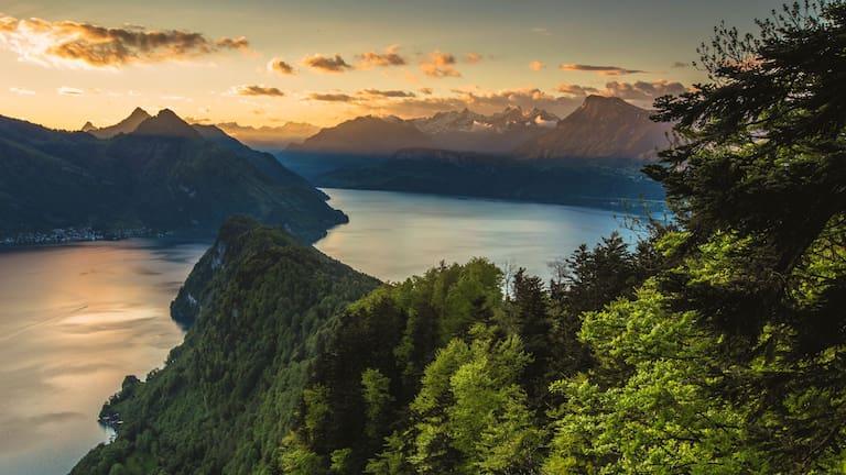 Waldstätter Weg: Von Brunnen nach Vitznau – hier mit Blick auf den Vierwaldstättersee