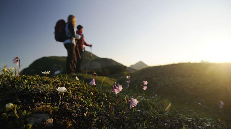 Wanderer in den Tannheimer Bergen in Tirol