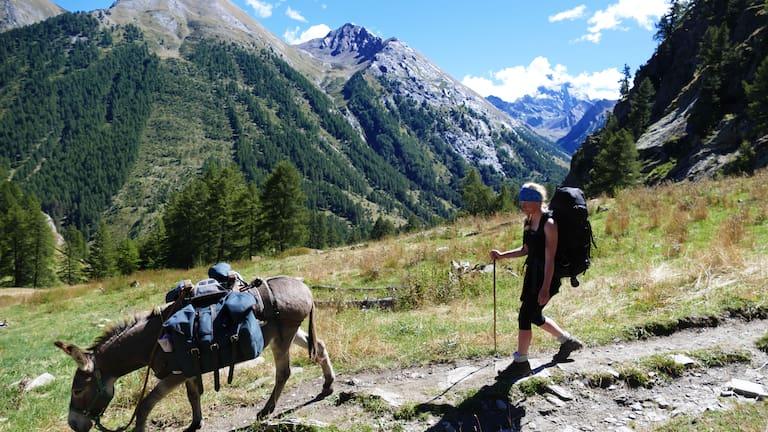 Esel-Trekking Provence