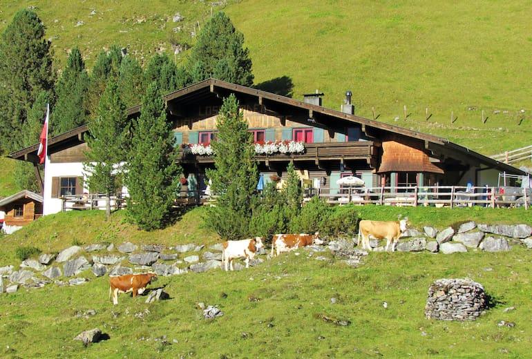 Hüllensteinhütte: Sommer