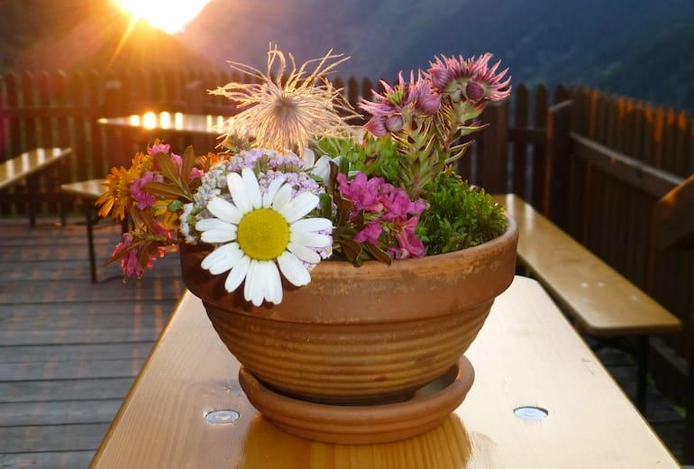 Preintalerhütte - Terrasse