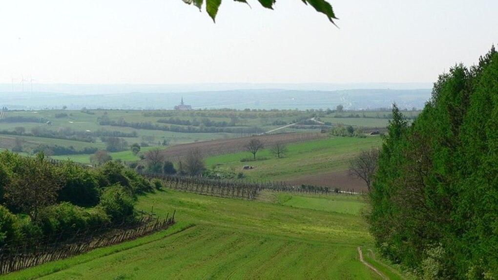 Wandern Jakobsweg Weinviertel Etappe 2 Von Bergwelten