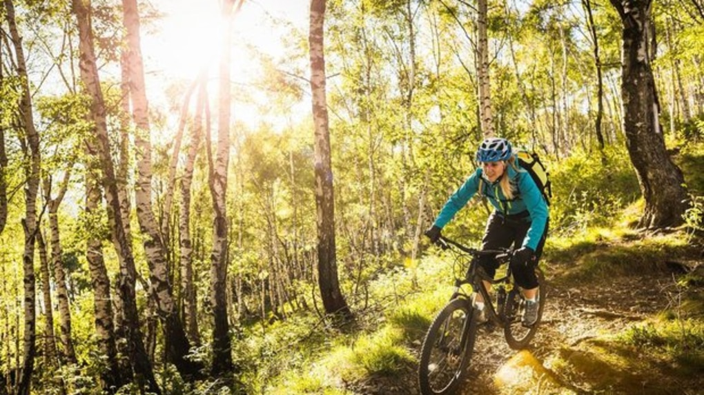 Symbolfoto Mountainbike
