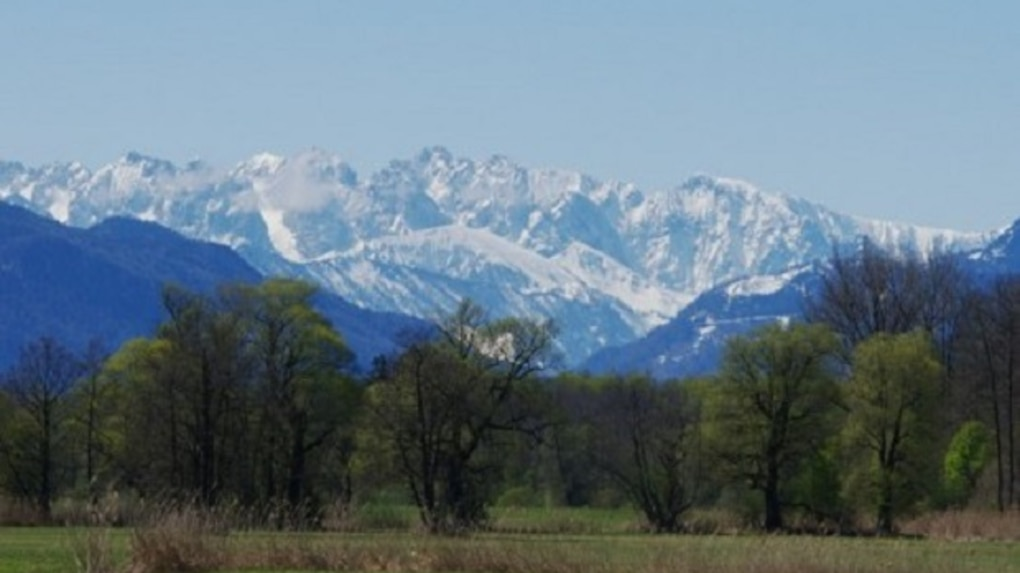 Ganz und zu Extrem ▷ Wandern: Naturschutzgebiet Grabenstätter Moos - Bergwelten @GF_83