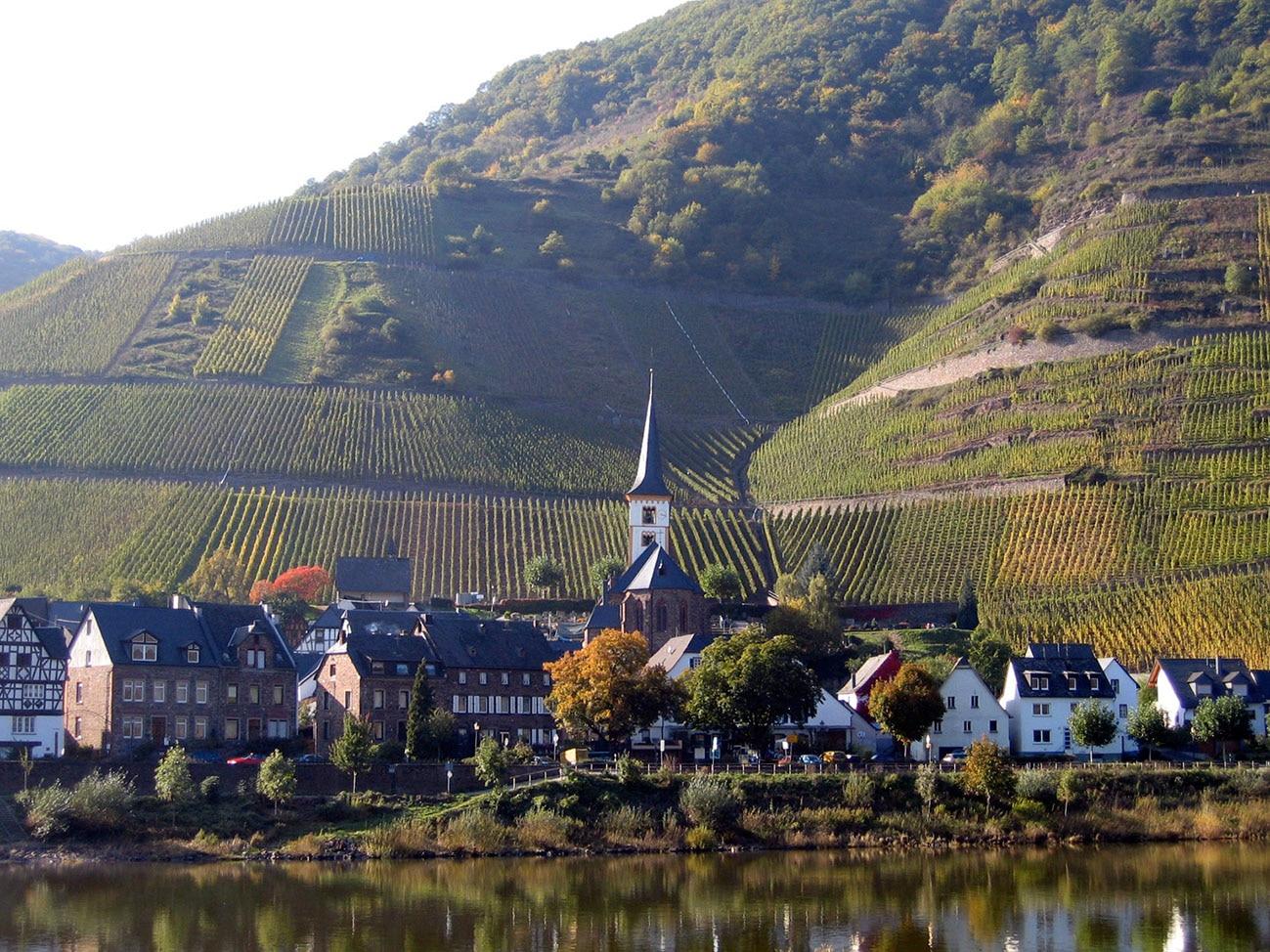 Klettersteig Pfalz : Klettersteige klettersteig auf den bremmer calmont km bergwelten