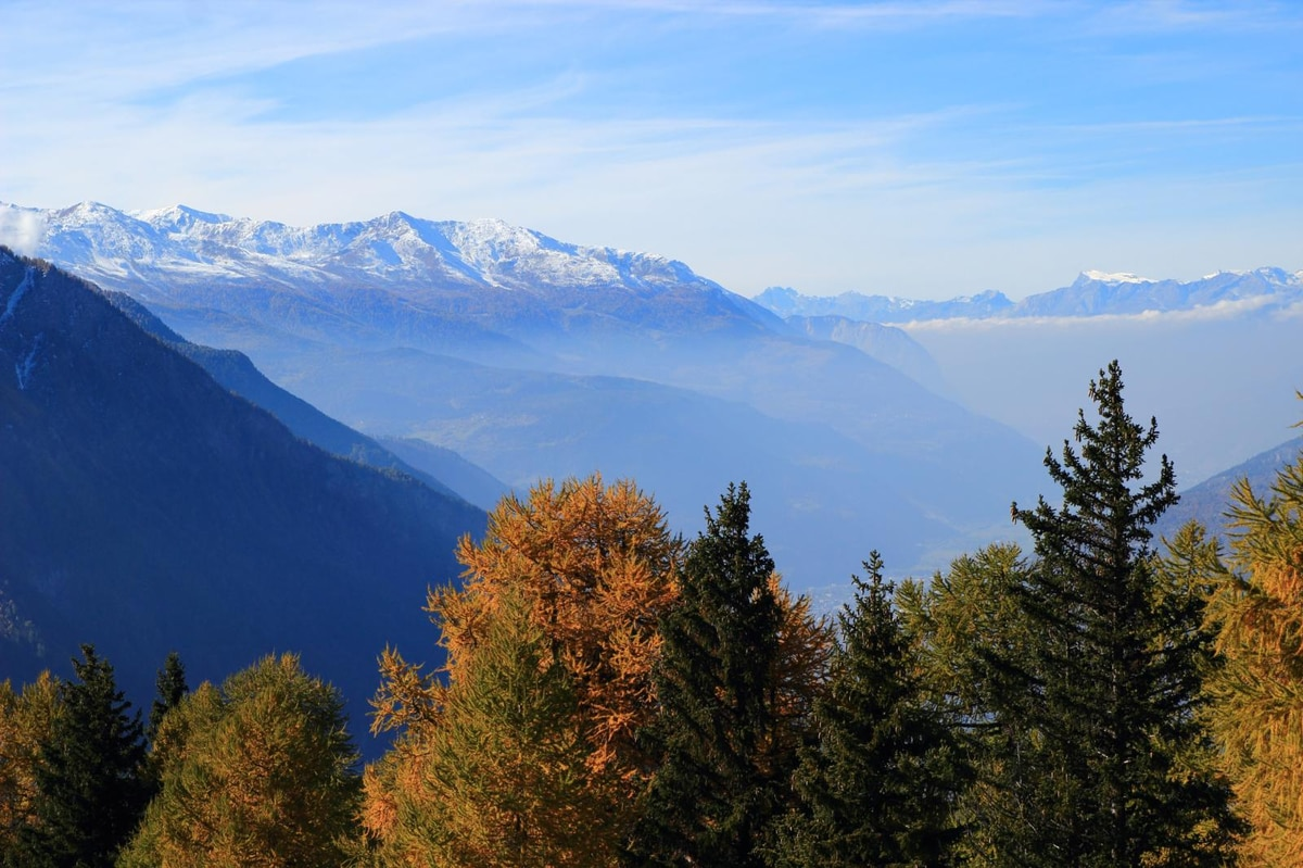 Wandern: Rosswald - Folluhorn - Rosswald - 8km - Bergwelten