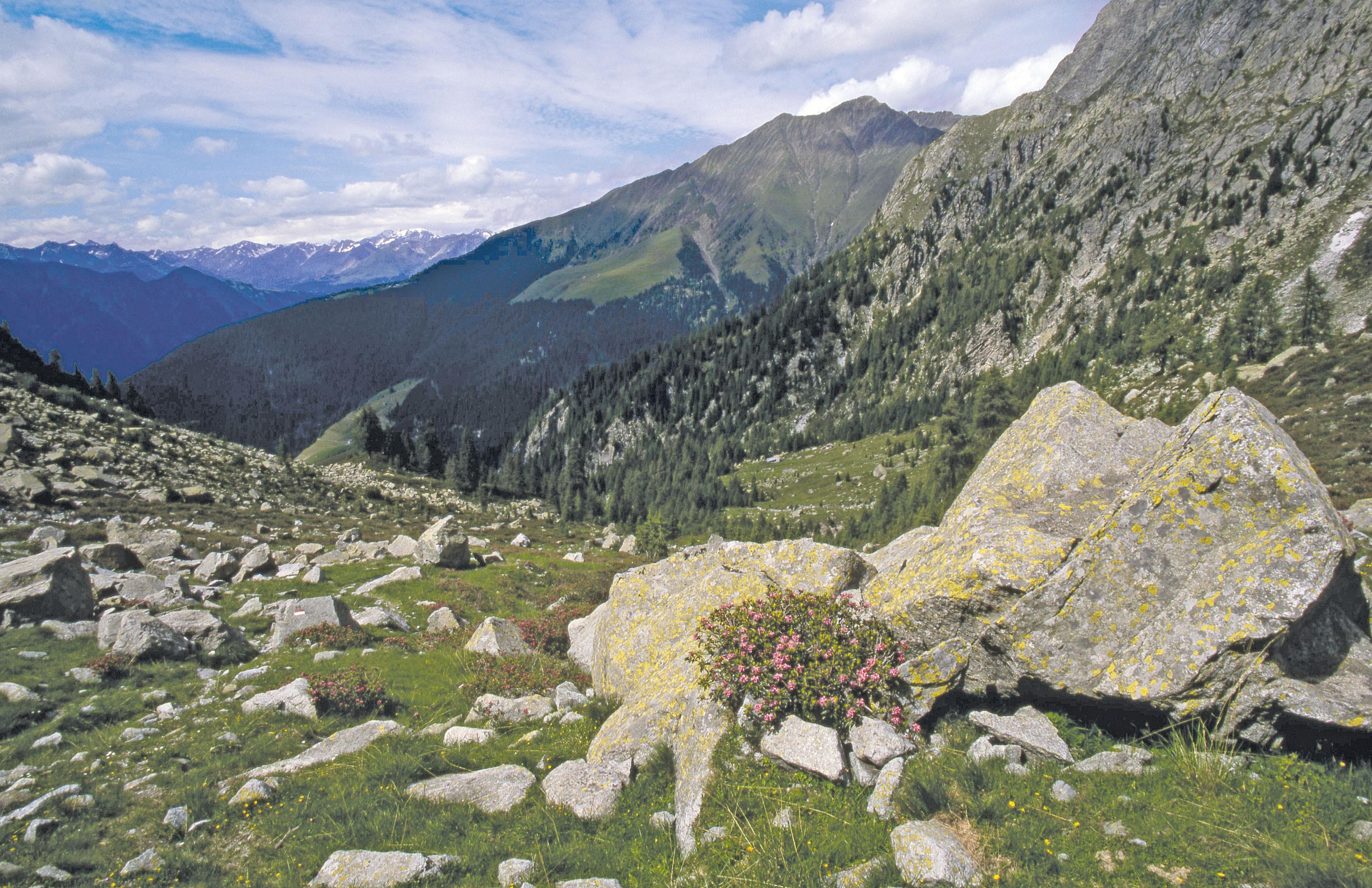Klettersteig Ifinger : Großer ifinger m bergwanderung klettersteig u hotel leuchtenburg